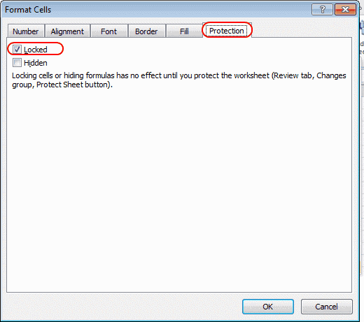 Excel locked setting
