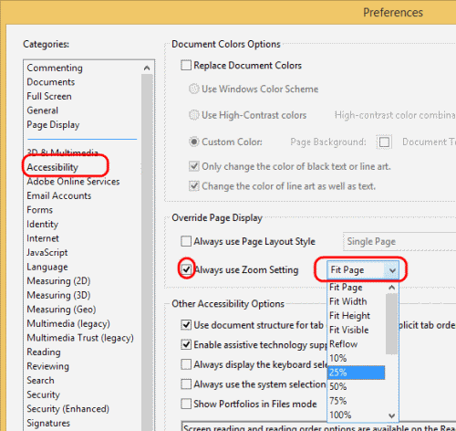 Reader Accessibility settings