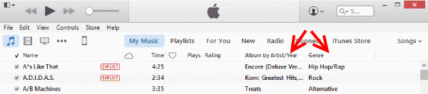 iTunes Genre and Album columns