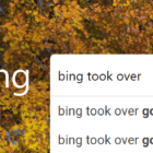 Why Is Bing My Default Search Engine?