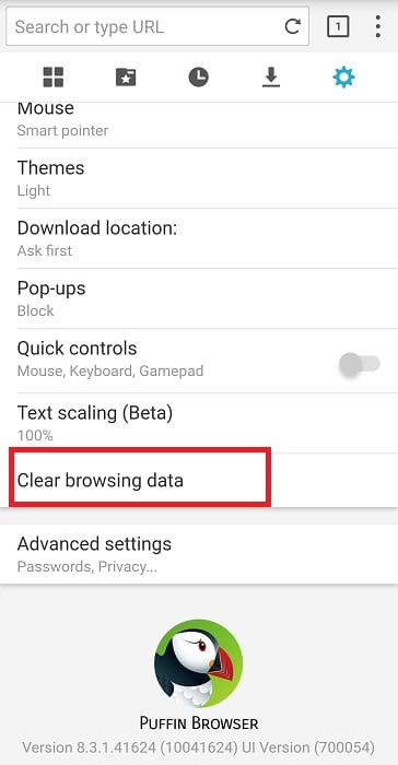 puffin browser clear browsing data