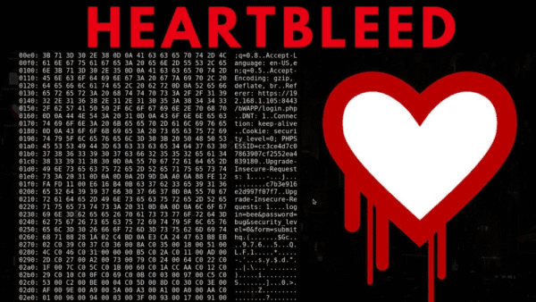 What Is the Heartbleed Vulnerability?