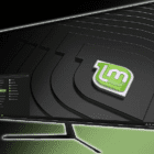 Linux Mint: How to Configure Workspaces