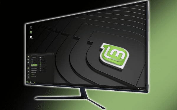Linux Mint: How to Configure the Key Repeat Delay and Speed