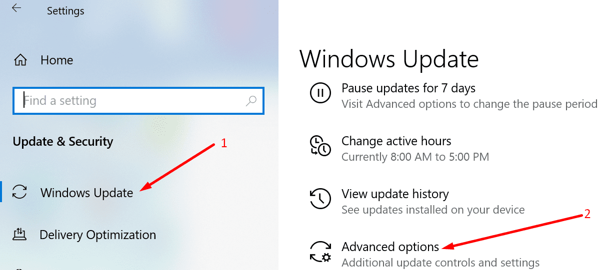 windows 10 advanced update options