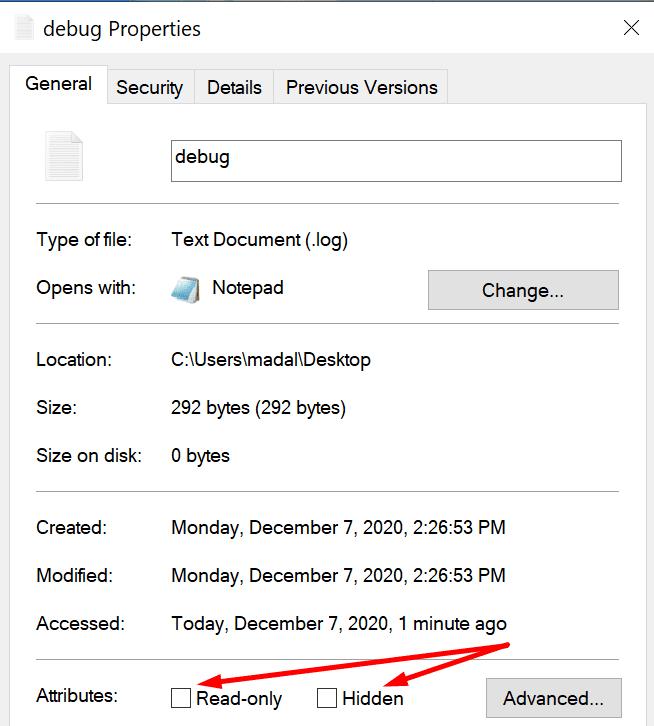 make debug file read-only hidden