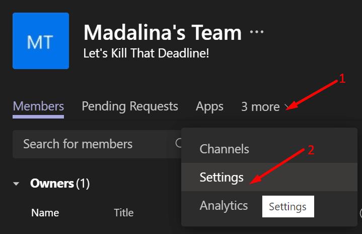 team settings microsoft team app