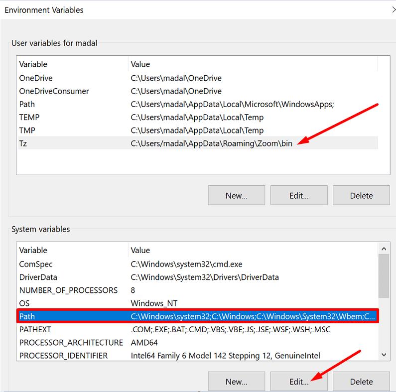environment variables windows 10