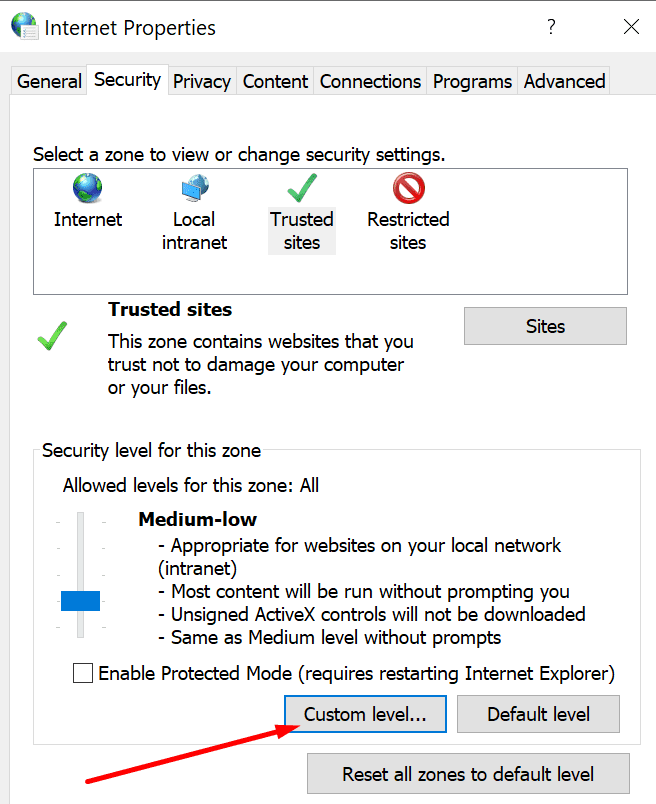 internet properties custom level security settings