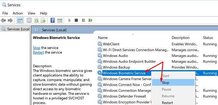 windows-biometric-service
