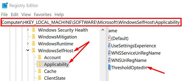 thresholdoptedin-windows-registry