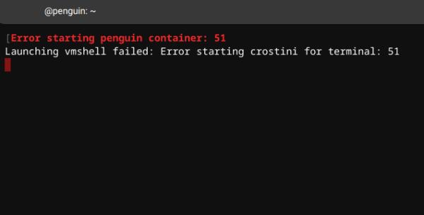Fix Chromebook: Error Starting Penguin Container