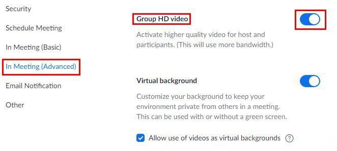 Group HD option Zoom