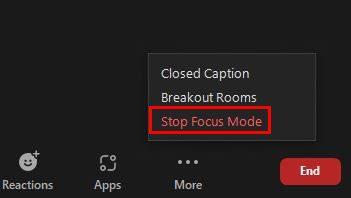 Turn off focus mode Zoom